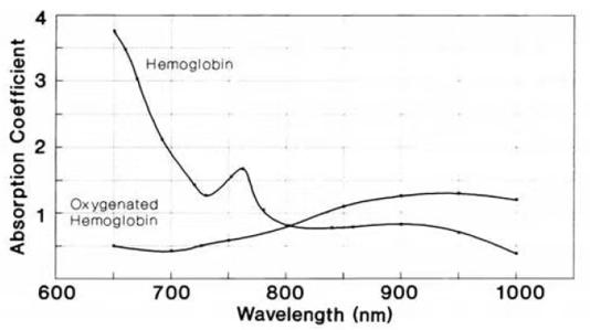 BrightLaser_Wavelength-Absorption Coefficient Graph