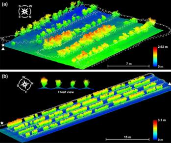 LIDAR_3D Scanning_Agriculture_Point Cloud