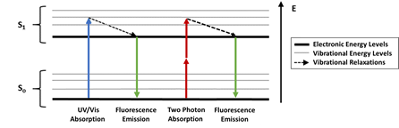 Jablonski diagram two-photon fluorescence