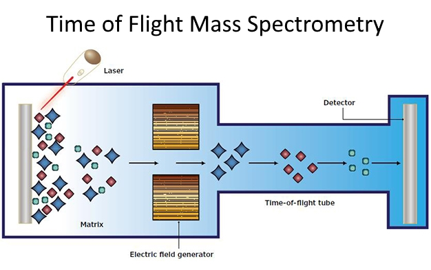 time of flight mass spectrometry